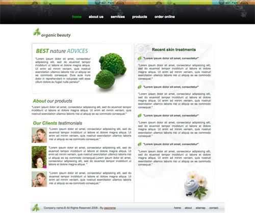 60套高品质的专业免费网站模版 - 趣趣风驰 - 设计|视觉|广告|互联网|软件|酷站
