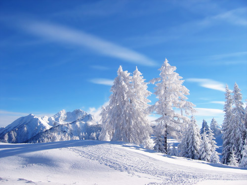winter landscape 100 Absolutely Beautiful Nature Photography